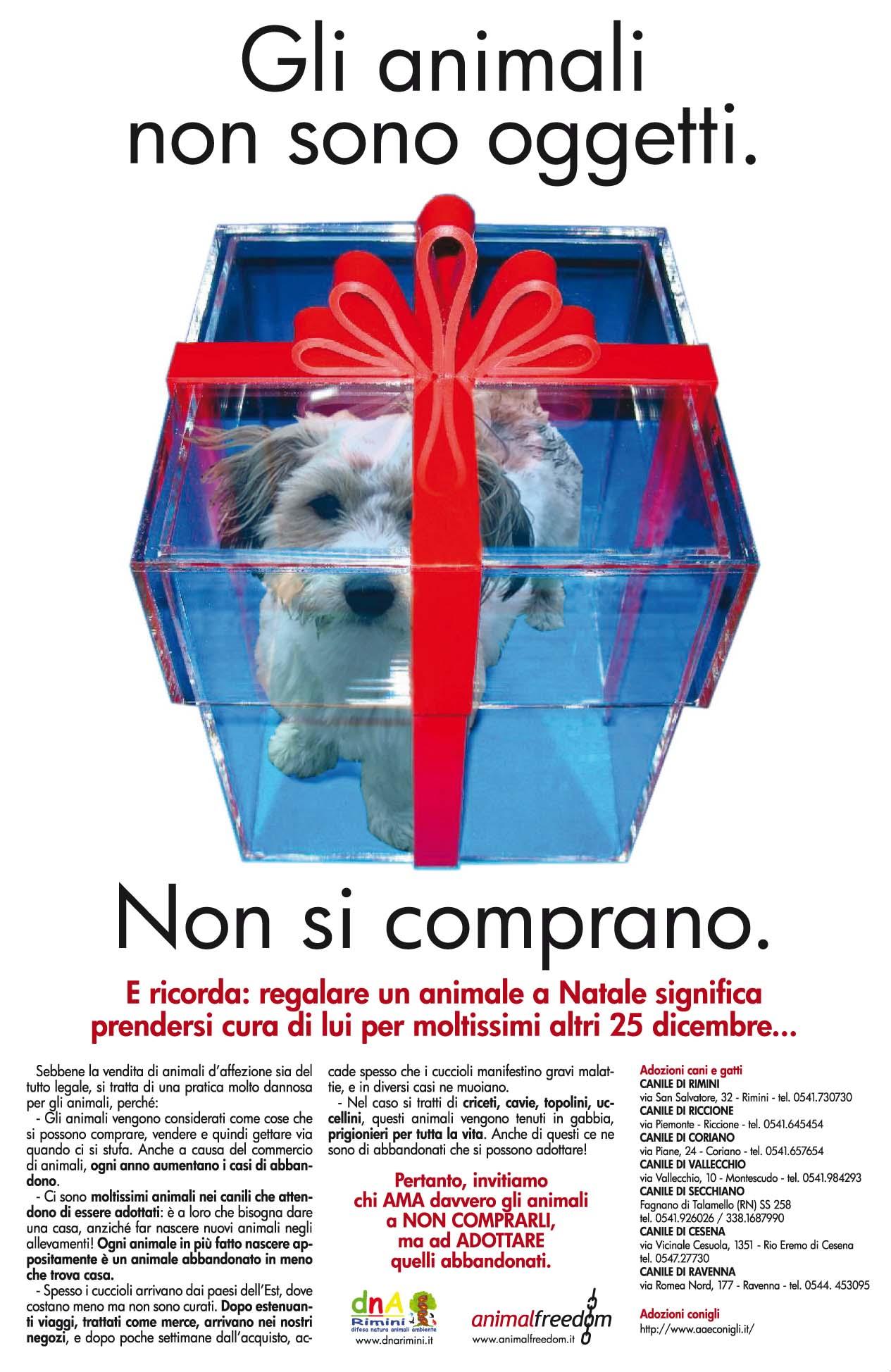 Animali e umani paperblog for Animali a natale